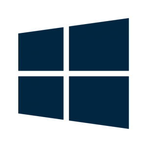 Windows license